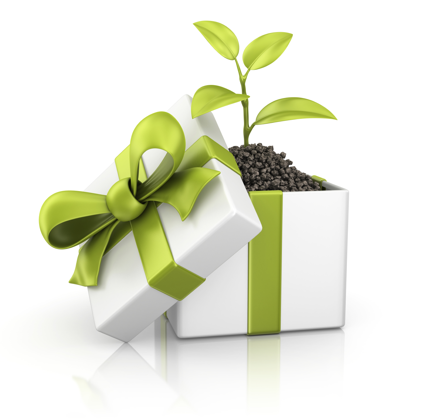 Green Gift Giving! – The Local Grocer